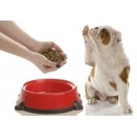 Рентгенологическое обследование корма для домашних животных при производстве