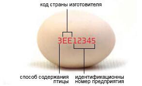 2778-002